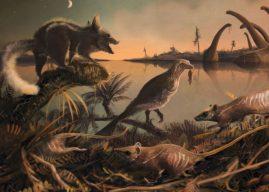 Фосили најстаријих предака